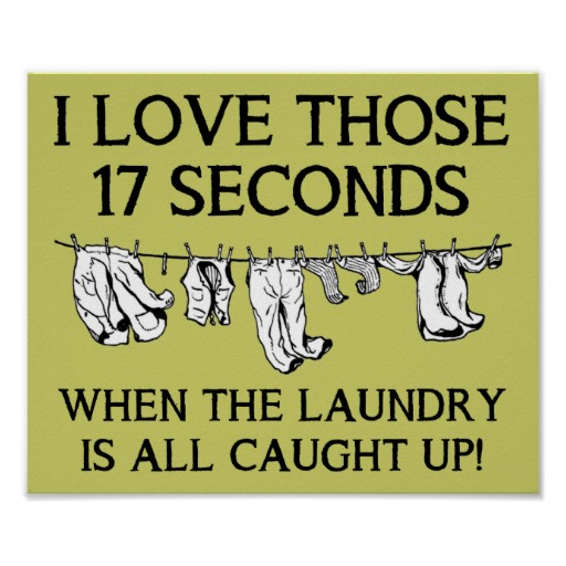 Here Are Some Funny House Cleaning Pictures  Enjoy! | Bit A